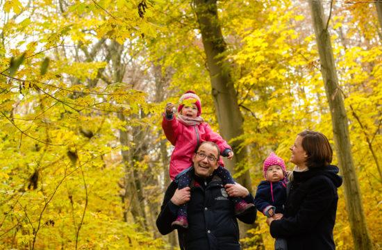 Familienfotos im Wald mit viel Herbstlaub